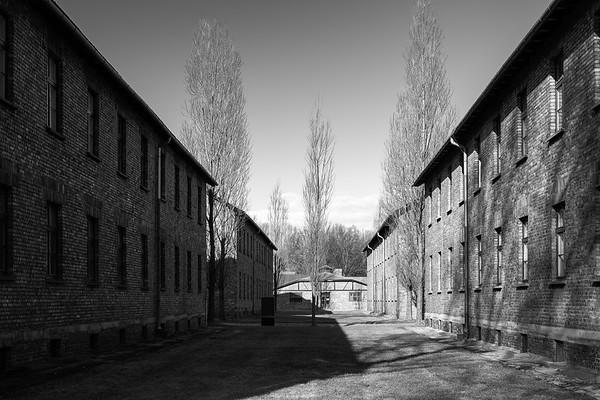 Auschwitz Birkenau_19