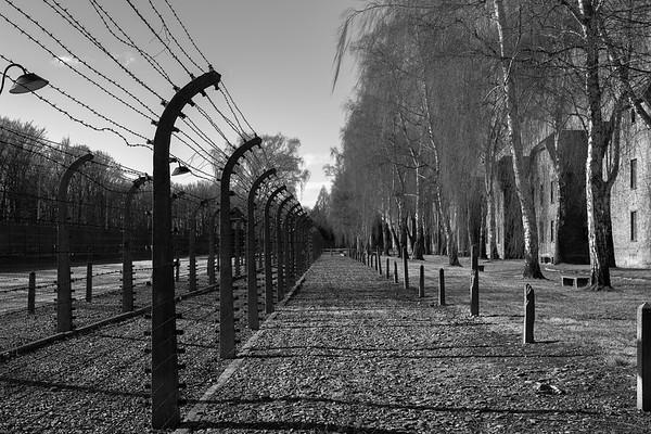Auschwitz Birkenau_20