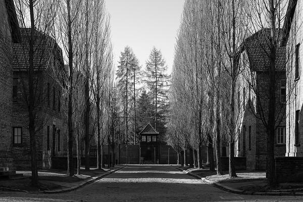 Auschwitz Birkenau_14