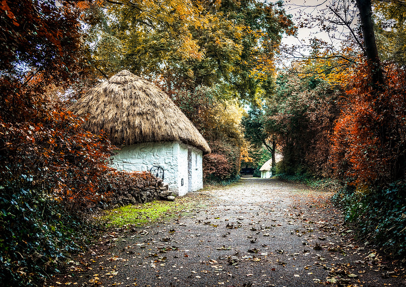 The Road to Bunratty