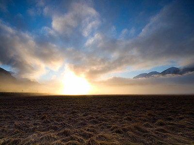 Here the sun shining through the morning fog creates what looks like an explosion on the tidal flats near Sunny Point. December 3rd, 2009.