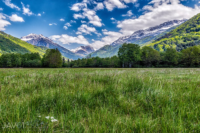 Spring view in the Alps