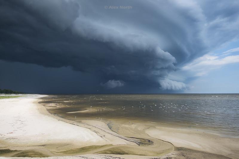 Storm-Passhbr1-2