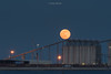 Moon-silogpthbr1