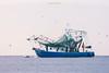 Boats-LadySariahDolphin1