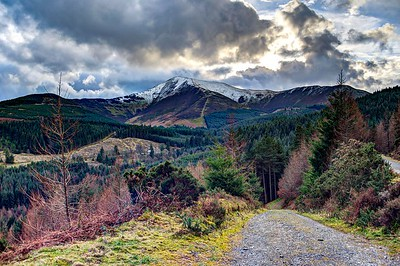 Sat 4th Feb : Whinlatter Forest Park : Bob's Seat : Grisedale Pike