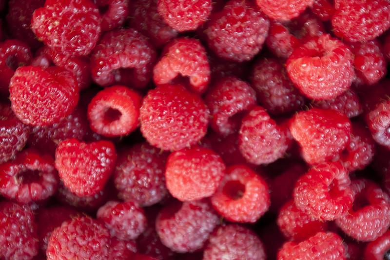 Raspberries from the Pinestead Tree Farm garden.  Late summer 2012.