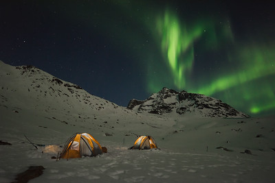 Aurora Borealis over camp, East Greenland