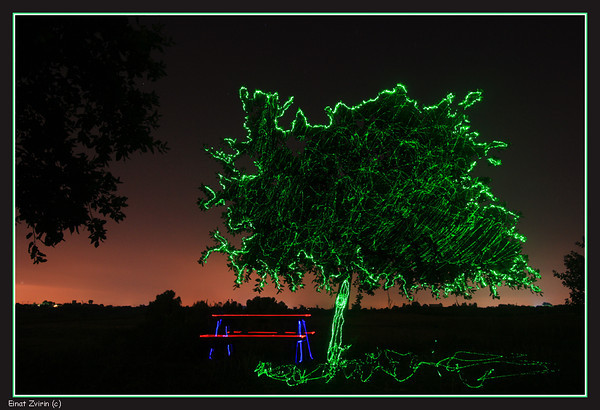 "Midnight Picnic <p>See another Midnight Picnic, <a href=""http://www.einatix.com/Nature/Forests-Fields/i-5JQgCp7""> here</a></p>"