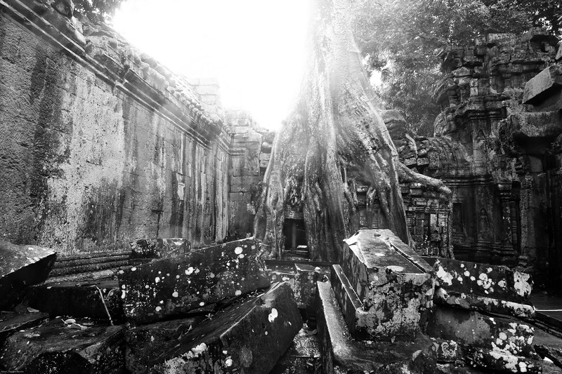 Ta Prohm, in a monsoon downpour, Cambodia