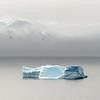 Antartica, 2018. ©AlisonTaggartBarone.com
