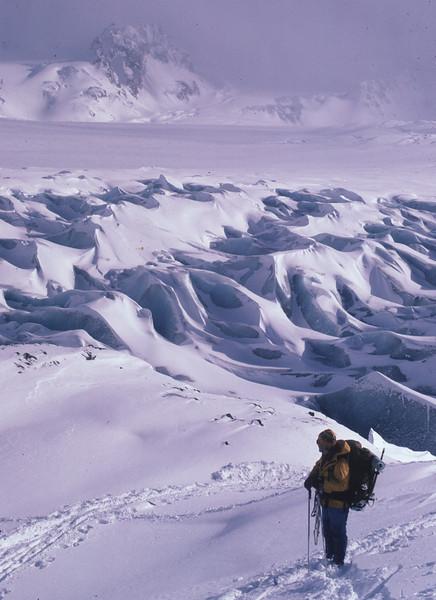 Harding  Icefield on Kenai Penninsula