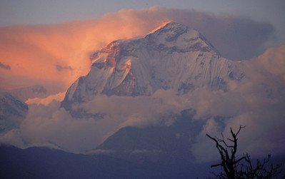 "Nepal - South of Dhaulagiri 1994 ""Dhaulagiri Sunrise"""