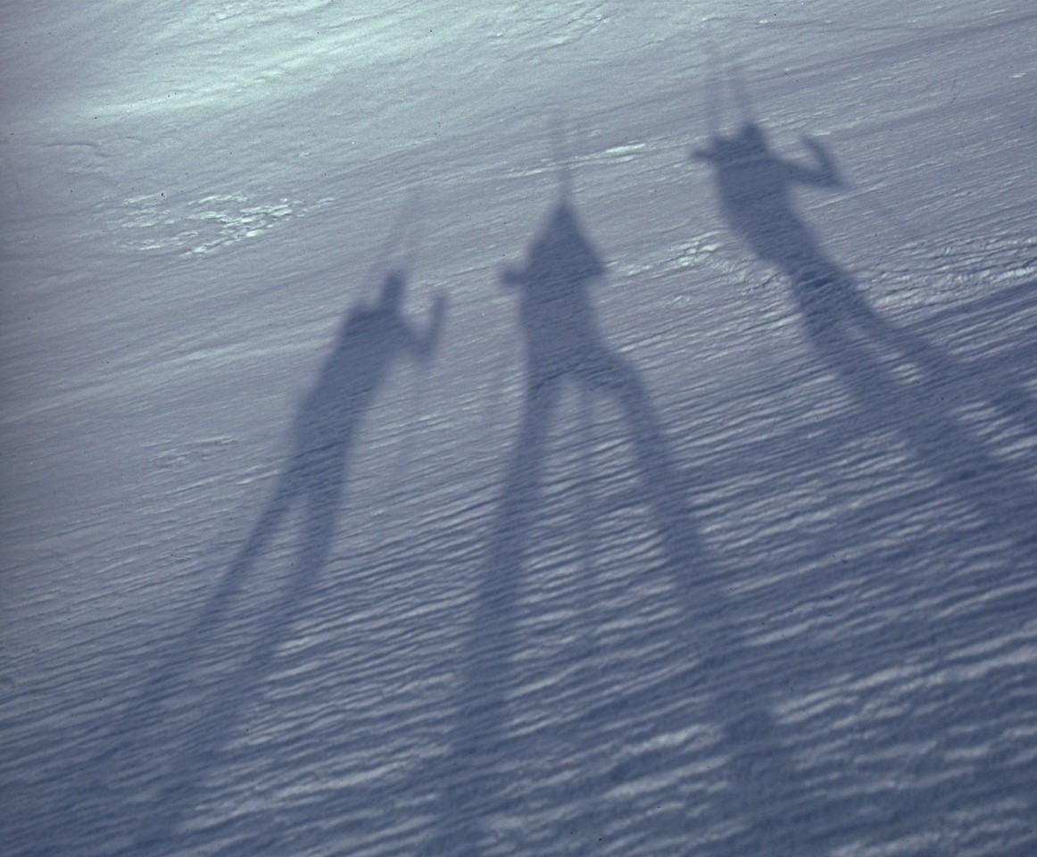 """Shadows on Stilts"" - Somewhere in the Sierra"