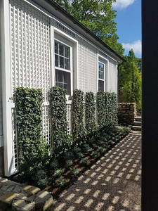 198 - 565291 - Washington CT - Custom Lattice