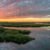 Dawn at the Saltmarsh