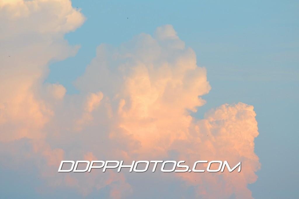 DDP_1497