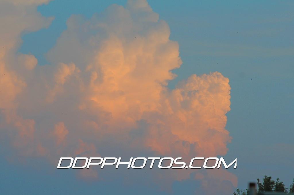 DDP_1498