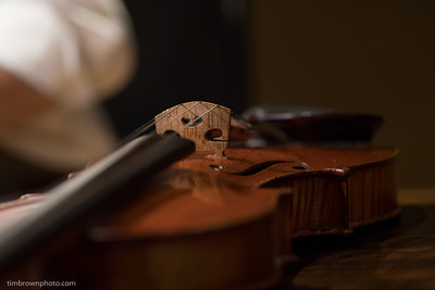 Desk top violin