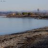 2012-01-25 Semiahmoo Spit - _MG-3841