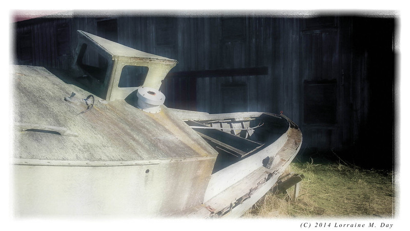 2012-01-25 Semiahmoo Spit - IMG_0040
