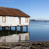 2012-01-25 Semiahmoo Spit
