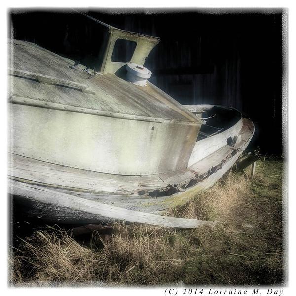 2012-01-25 Semiahmoo Spit - IMG_0032