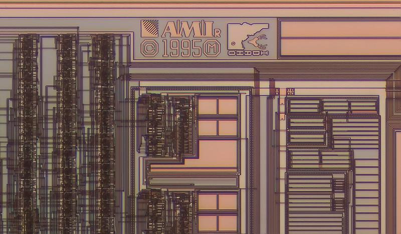 AMD crop
