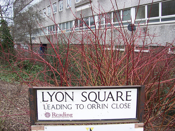 Lyon Square..one huge lump of concrete incorporating a community centre,a youth club and a row of shops.Above the shops are a single storey row of flats,then at right angles,a block of maisonettes.