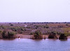 Net Fishing from the Shore, Maki Diama, Senegal (Pentax 645)