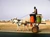 Horsecart, Highway N2, Theis, Senegal