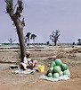 Melons for Sale, Theis, Senegal