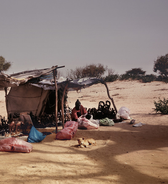 Curios in the Desert, I, Theis, Senegal