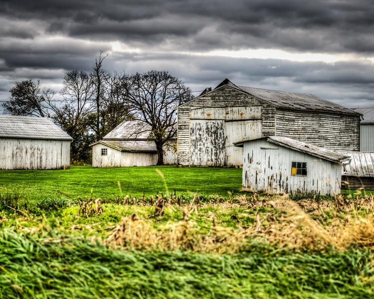 White Barns 7298