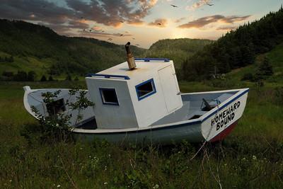 Boat in Grass  69