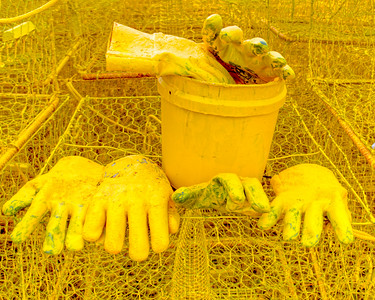Yellow Gloves and Bucket 3164