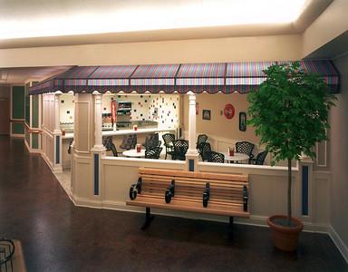Wellstead - Rogers MN - Ice Cream Parlor 2