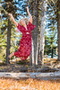 Holly Flynn Sr Photos Mt Spokane-5302