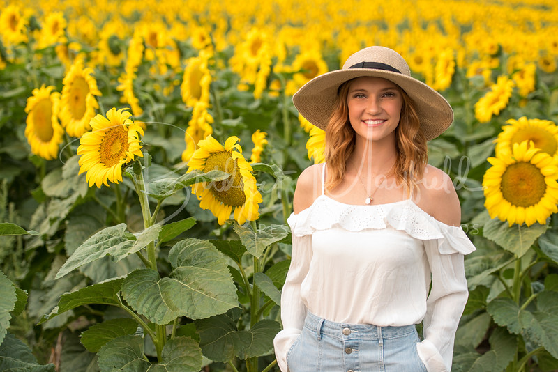 Senior Photos - Josie Whitsett - Sunflowers - WEBSITE-4850-049