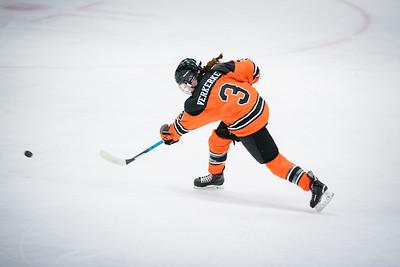 DLS_4433HockeyHM