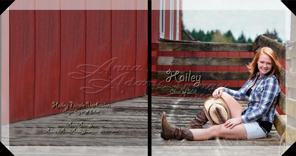 Hailey Verhaalen 10x10HardCoverBook Cover