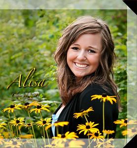 10x10 Hard Cover Book Layout Sample ~ Alisa P. 2011