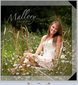 10x10 Hard Book Layout Sample ~ Mallory M. 2011
