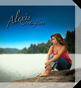 10x10 Hard Cover Book Layout Sample ~ Alexis Co. 2012