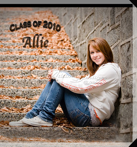 10x10 Hard Cover Book ~ Allie B. 2010