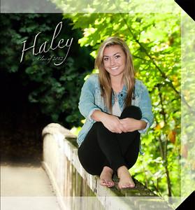 10x10 Hard Cover Book ~ Haley Hoon Sample ~ 2012
