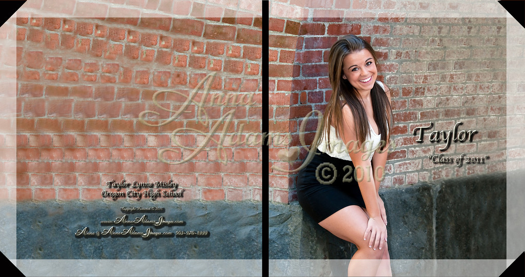 Taylor Misley 10x10HardCoverBook Cover