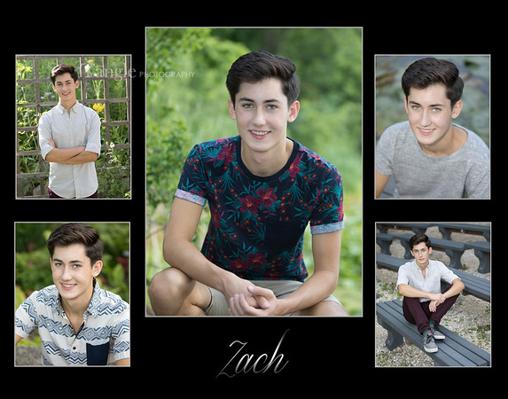 ZachCollage3