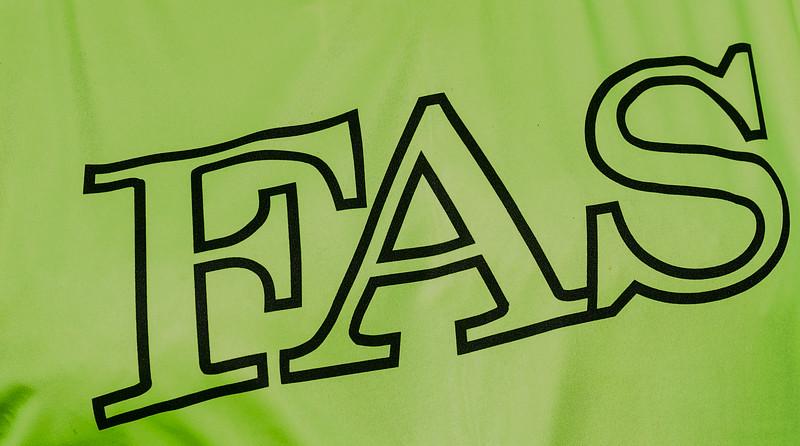 EWFAS-1