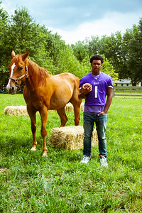 Senior Stallions (22 of 346)